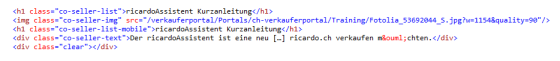 WYSIWYG Code Snippet Basic